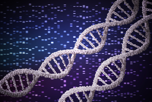 2 DSE Gene Mutations Newly Identified, Linked to Musculocontractural EDS