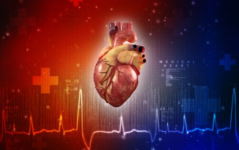 Routine Heart Tests Not Needed for Hypermobile EDS Patients Unless Cardiac Problems in Family, Study Suggests