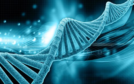 Newly Identified Mutation in TNXB Gene Linked to Classical-like Ehlers-Danlos in Case Report
